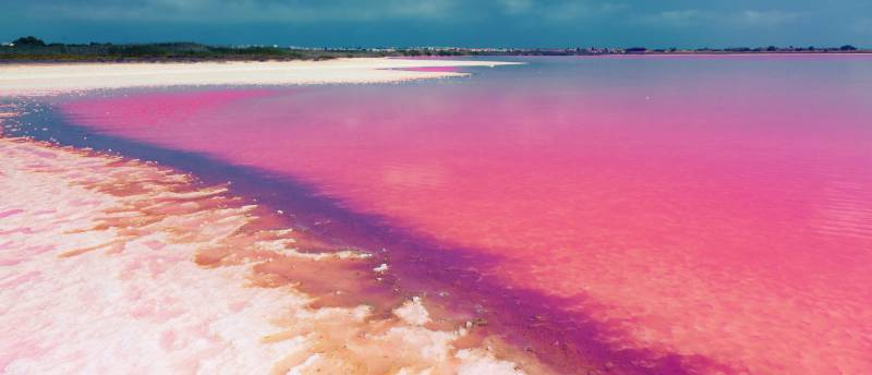 This is the pink lagoon of Torrevieja: a unique natural phenomenon in Spain